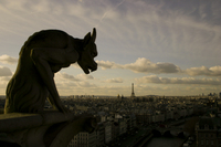 Go Gothic Visiting the Notre Dame Cathedral of Paris (completed by 7)