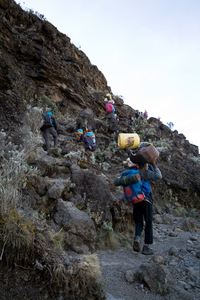 Reach the Roof of Africa, Mount Kilimanjaro (desired by 4)